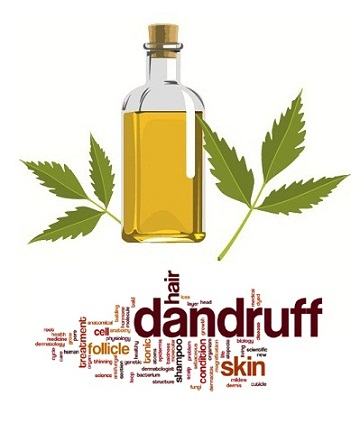 neem-oil-for-dandruff
