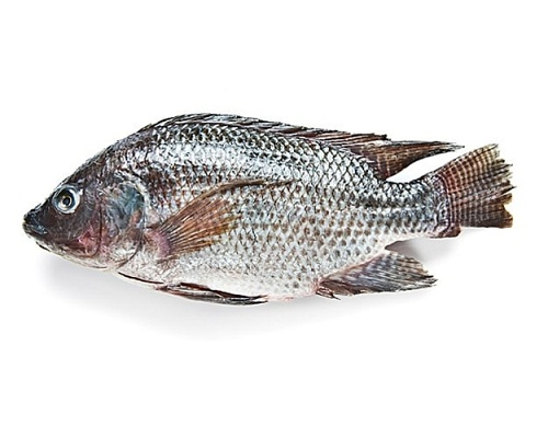 Diet Chart for Weight Gain - Fish