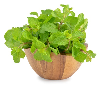 How to Remove Pimples--Peppermint Leaves
