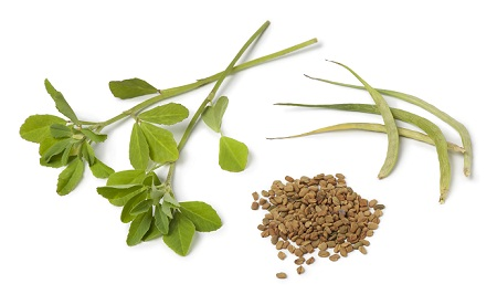 How to Remove Pimples-fenugreek