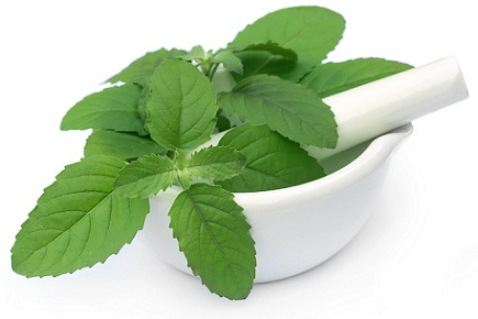 How to Remove Pimples-tulsi Holy basil