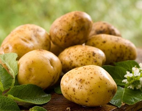 Potato And Cucumber