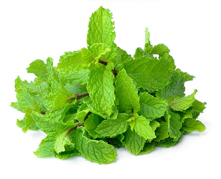 Remedies for dark cirlces - mint leave