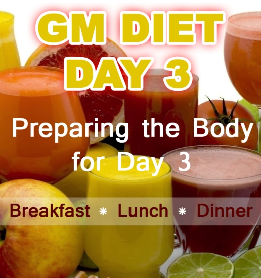 Gm Diet Day 3