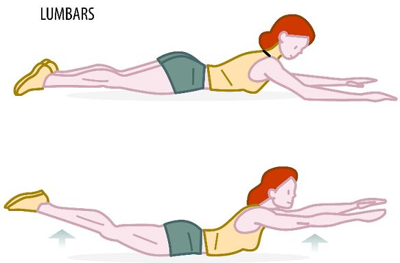strenth Exercises 4 lumbars