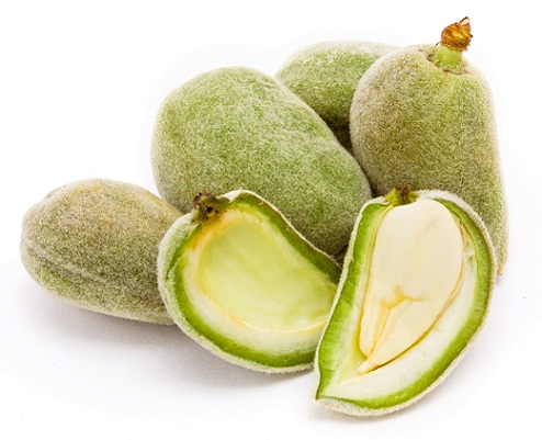 Green almond for Tan remove from Hands (1)