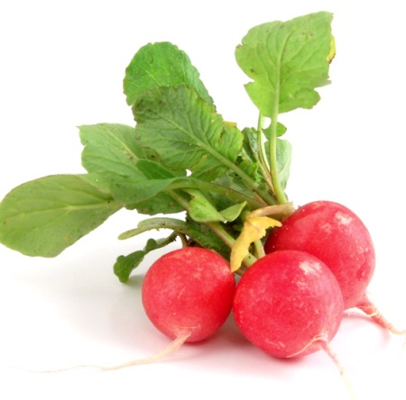Foods To Avoid While Pregnant Radishes