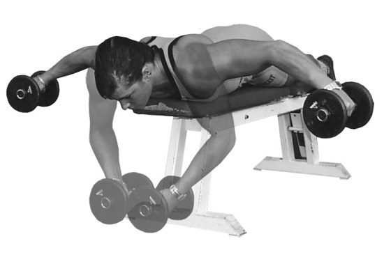 Butterfly With Dumbbells Standing Up Another Great Exercise For Your Chest