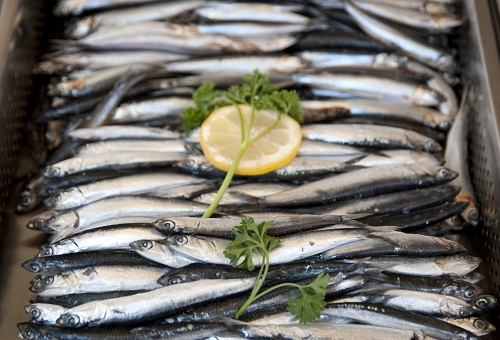 Foods That Increase Height Rapidly Fish
