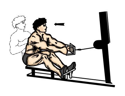 Exercises 6