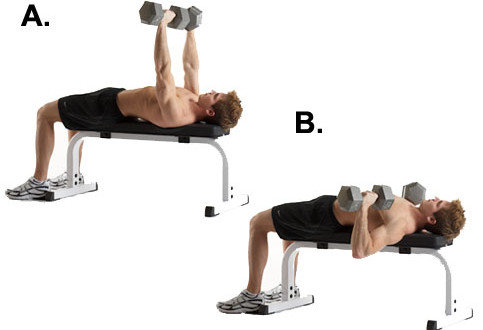 lower chest exercise 9