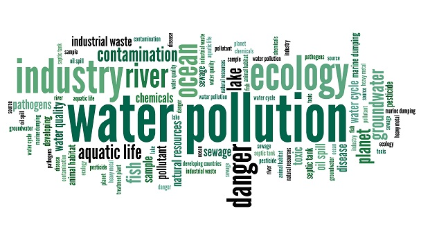 pollution and words free sample Free water pollution papers, essays  we had decided to go to three places and collect water samples so that we could conduct different tests on samples such as:.