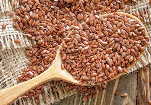 Zinc Rich Foods - Flax Seeds