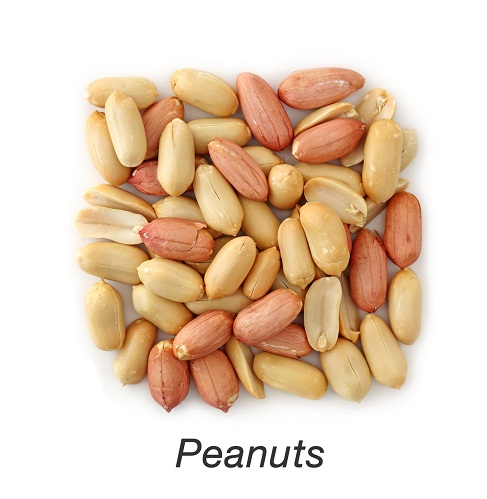 zinc in food items - Peanuts