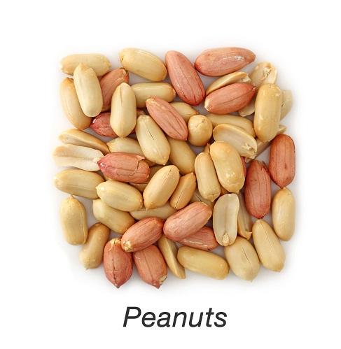 Zinc Rich Foods - Peanuts