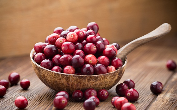 Which Fruit Is Good For Diabetes Patient Cranberry