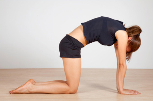 Baba Ramdev Yoga for Back Pain 2