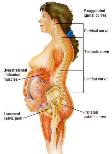 Back Pain during Pregnancy 2
