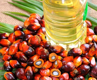Palm Oils Foods With High Saturated Fat