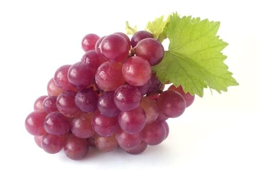 HDL Cholesterol Foods 8