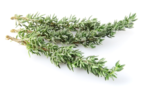 Best herbs for memory loss picture 2