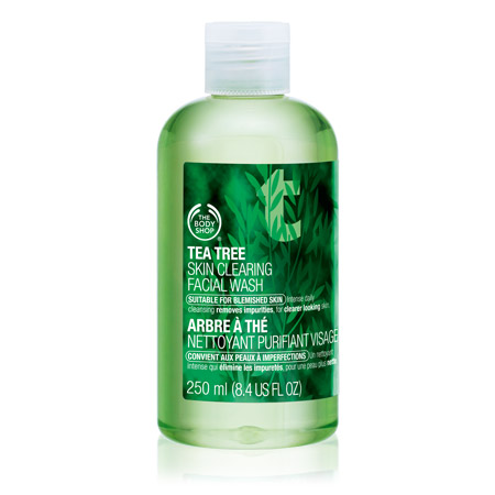 tea-tree-skin-clearing-facial-wash-2_l