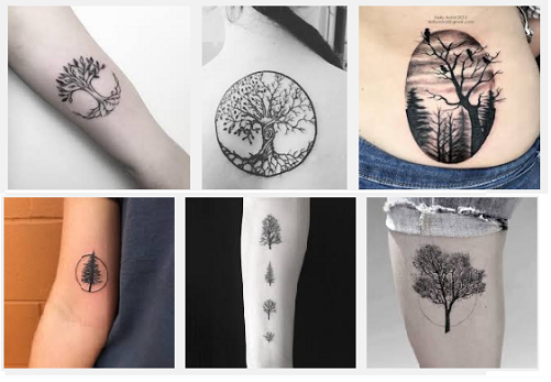 best-tree-tattoo-designs-with-meanings