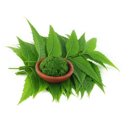 Tulsi Face Packs 3
