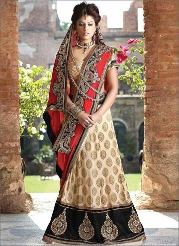 Unique ways to wear a saree 6