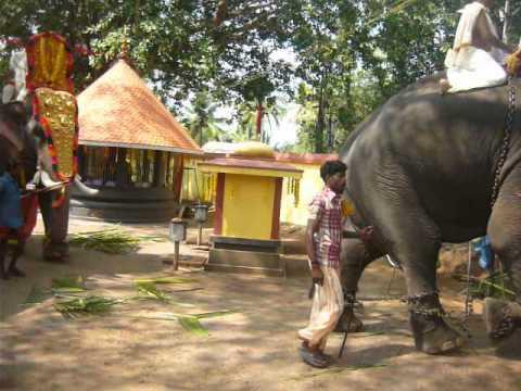 Edava Palakkavu Bhagavathi Temple At Edava