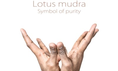 lotus mudra  how to do steps and benefits  styles at life