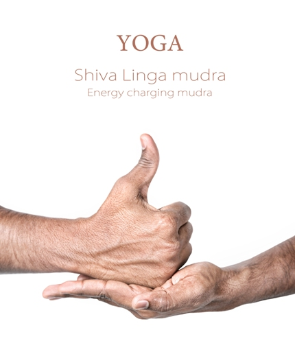 lord Shiva Linga Mudra - How To Do Steps And Benefits