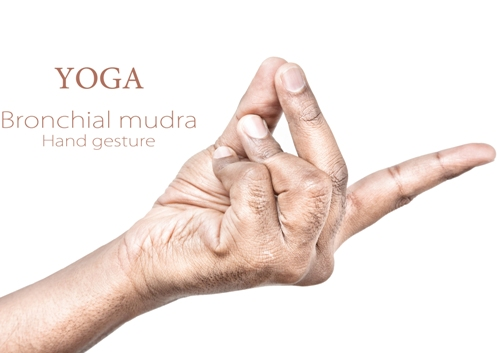 bronchial mudra 7865