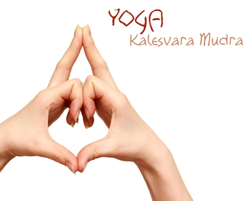 What Is Kalesvara Mudra Steps To Do And Benefits Styles At Life