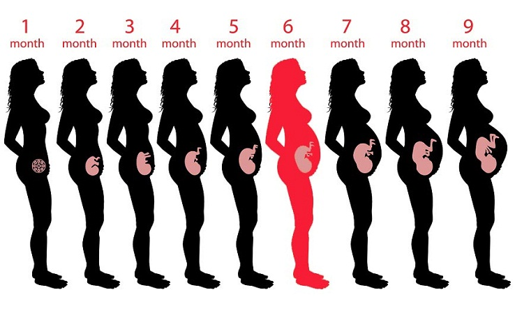 6th Month Pregnancy Diet foods