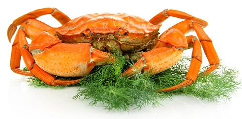 Things To Know Before Eating Crab During Pregnancy | Styles