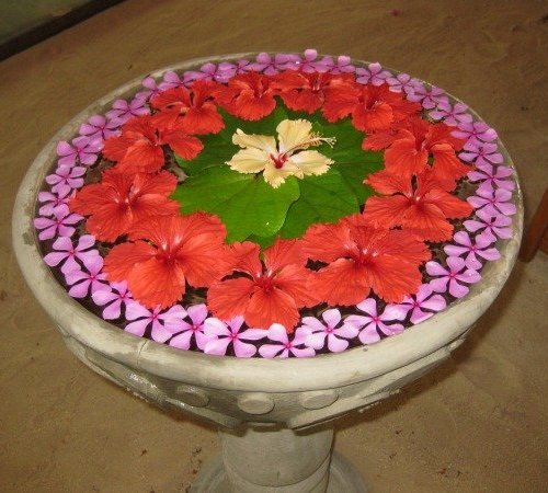 Special Rangoli Designs Rangoli with Flower and Water