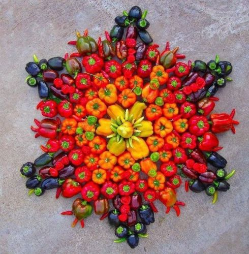 Special Rangoli Designs Vegetable Rangoli