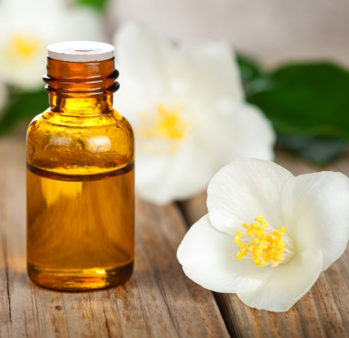 Essential oils to avoid during pregnancy Jasmine