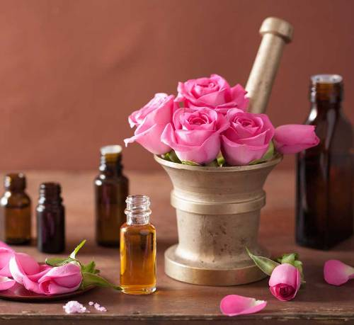 Essential oils to avoid during pregnancy Rose