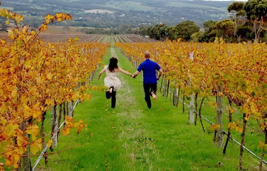 Honeymoon Places For Young Couples-Australia barossa valley