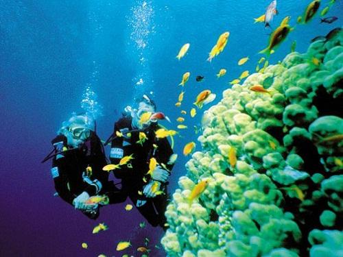 Honeymoon Places In Maldives - Banana Reef