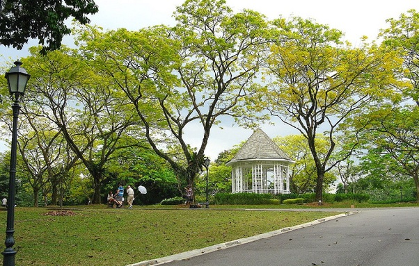 honeymoon-places-in-singapore_botanic-gardens