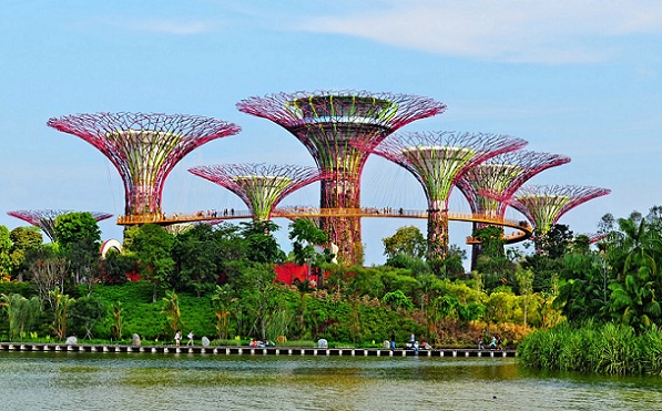 honeymoon-places-in-singapore_gardens-by-the-bay