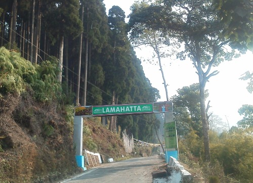 Honeymoon Places in Darjeeling Lamahatta