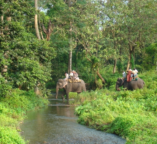 Honeymoon Places in West Bengal Duars