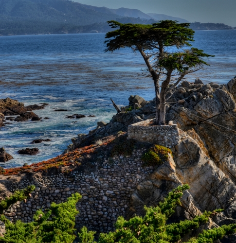Honeymoon places in California Drive on the Monterrey Peninsula