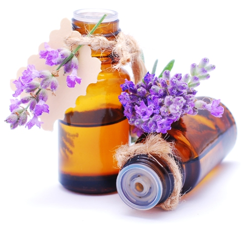 Lavender oil During pregnancy