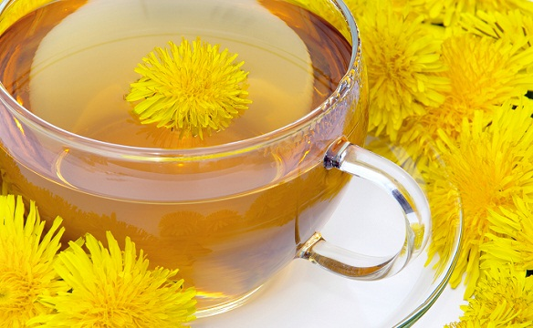 Teas During Pregnancy-Dandelion Tea