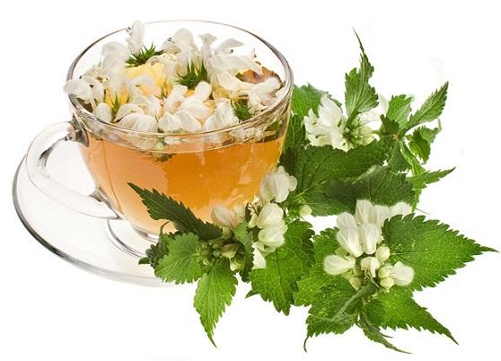 Teas During Pregnancy-Raspberry Leaf Tea